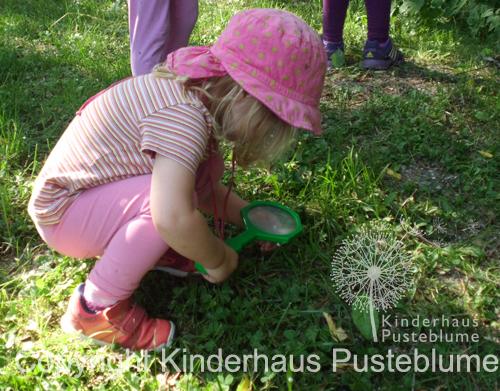 Montessori_wald_3041
